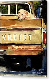 Free Ride Acrylic Print by Molly Poole