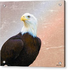 Freedom Flyer Acrylic Print by Jeff Kolker