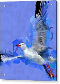 Freedom Acrylic Print by Georgi Dimitrov