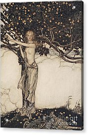 Freia The Fair One Illustration From The Rhinegold And The Valkyrie Acrylic Print by Arthur Rackham