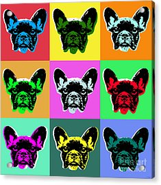 French Bulldog Acrylic Print by Jean luc Comperat