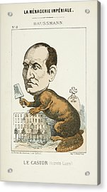 French Caricature - Le Castor Acrylic Print by British Library