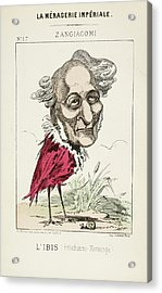 French Caricature - L'ibis Acrylic Print by British Library