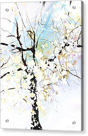 Fresh Pick No.394 Acrylic Print by Sumiyo Toribe