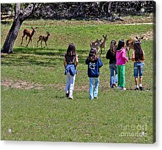 Friends Making Friends Acrylic Print by Bob and Nadine Johnston
