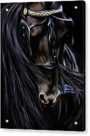 Friesian Spirit Acrylic Print by Michelle Wrighton