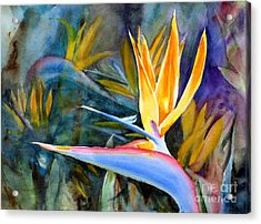 From Paradise Acrylic Print by Mohamed Hirji