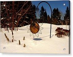 Frozen Garden Acrylic Print by Danielle  Broussard