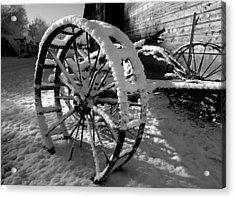Frozen In Time Acrylic Print by Steven Milner