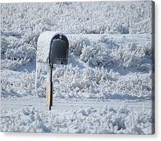 Frozen Mail Box Acrylic Print by Suzy Pal Powell