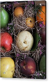 Fruit Basket Acrylic Print by Photo Researchers, Inc.
