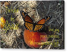 Fruit Of The Spirit Acrylic Print by Robyn Stacey