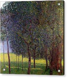 Fruit Trees Acrylic Print by Gustav Klimt