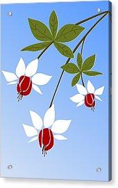 Fuchsia Acrylic Print by Anastasiya Malakhova