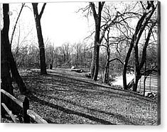 Fullersburg Woods Landscape In Black And White Acrylic Print by ImagesAsArt Photos And Graphics