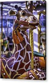 Fun Giraffe Carousel Ride Acrylic Print by Garry Gay
