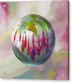 Fuschia Say Acrylic Print by Robin Moline
