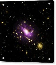 Galaxy Cluster Rx J1532 Acrylic Print by Nasa/cxc/stanford/j.hlavacek-larrondo Et Al/esa/stsci/m.postman And Clash Team