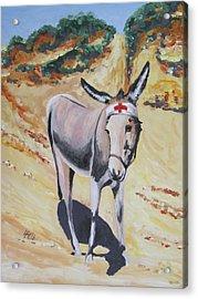 Gallipoli Donkey Acrylic Print by Leonie Bell