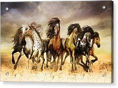 Galloping Horses Full Color Acrylic Print by Shanina Conway