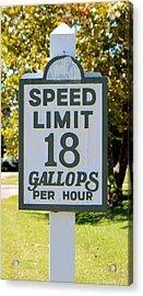 Gallops Per Hour Acrylic Print by Cynthia Guinn