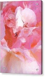 Garden Ballet Acrylic Print by Gwyn Newcombe