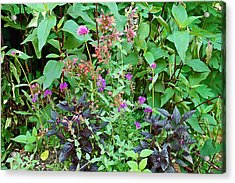Garden Bouquet Acrylic Print by Aimee L Maher Photography and Art Visit ALMGallerydotcom