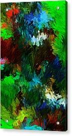 Garden In My Dream Acrylic Print by David Lane