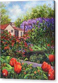 Garden With Tulips And Wisteria Acrylic Print by Susan Savad