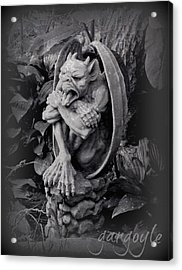 Gargoyle Acrylic Print by Brenda Conrad