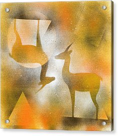 Gazelles Acrylic Print by Hakon Soreide