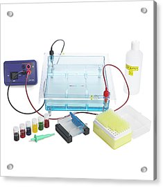 Gel Electrophoresis Equipment Acrylic Print by Science Photo Library