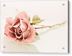 Gentle Acrylic Print by Elvira Pinkhas