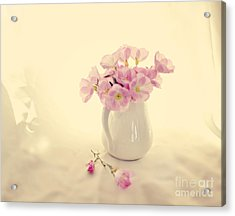 Gentle Light Acrylic Print by Linde Townsend