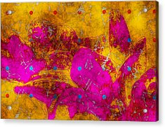 Gerberie - Fst01bca Acrylic Print by Variance Collections