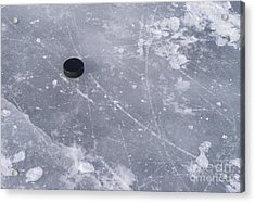 Get The Puck Outta Here Acrylic Print by Steven Ralser