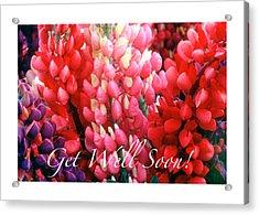 Get Well Soon Acrylic Print by Harold E McCray