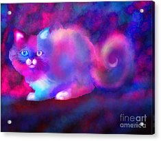 Ghost Cat 2 Acrylic Print by Nick Gustafson
