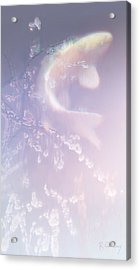 Ghost Koi Rising Acrylic Print by Robert Conway