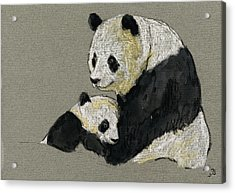 Giant Panda Acrylic Print by Juan  Bosco