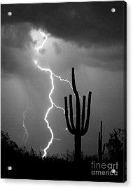 Giant Saguaro Cactus Lightning Strike Bw Acrylic Print by James BO  Insogna