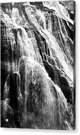 Gibbon Falls Acrylic Print by Bill Gallagher