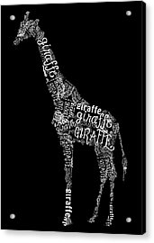 Giraffe Is The Word Acrylic Print by Heather Applegate