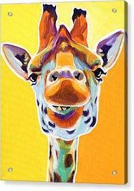 Giraffe - Sunflower Acrylic Print by Alicia VanNoy Call