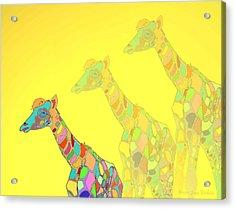 Giraffe X 3 - Yellow - The Card Acrylic Print by Joyce Dickens