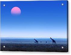 Giraffes On Salt Pans Of Etosha Acrylic Print by Johan Swanepoel