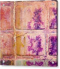 Glass Crossings 3 Acrylic Print by Carol Leigh
