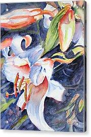 Gloria Acrylic Print by Barbara Jung