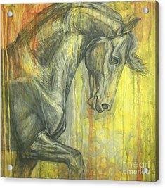 Glorious Acrylic Print by Silvana Gabudean