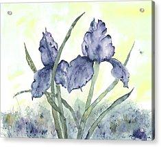 Gloriously Purple II Acrylic Print by Shirley Mercer